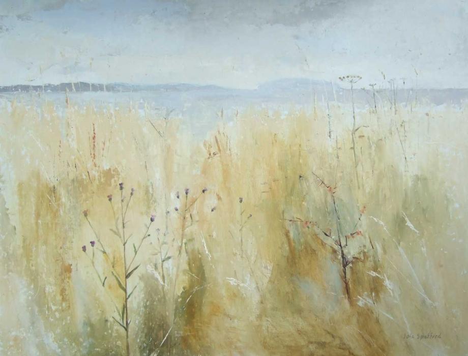 Penmon with grasslands